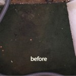 Pacifica-1-before-carpet