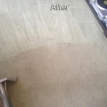 Pacifica-Carpet-Cleaning-Company