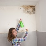 Pacifica-Mold-Remediation