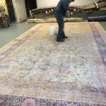 Pacifica-Professional-Rug-Cleaning
