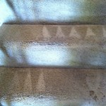 Pacifica-Stairs-Carpet-Cleaning