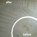 Pacifica-Wine-Stain-Carpet-Cleaning